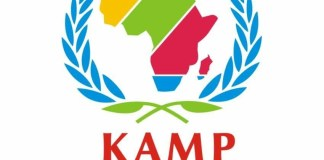 Konnect Africa Mentorship Program (KAMP)