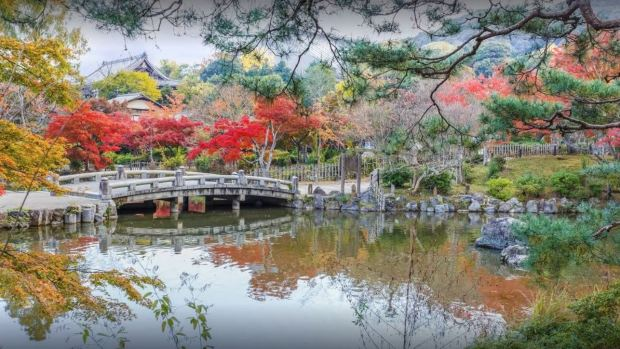 The Budget Traveller's Guide to One Week in Kyoto - Maruyama Park
