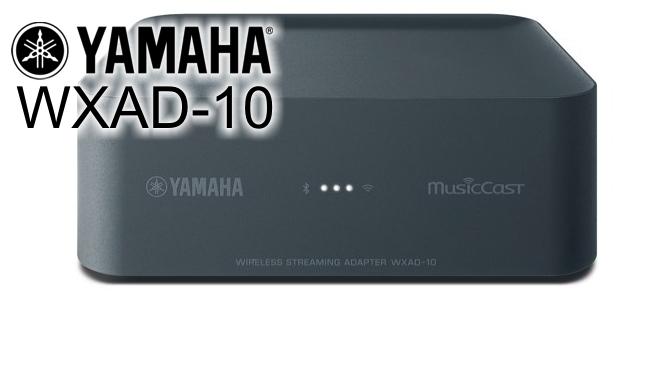 Hardwaretest: Yamaha WXAD-10 - MusicCast Black Box