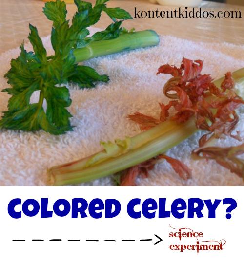 colored celery