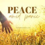 Peace Amid Panic
