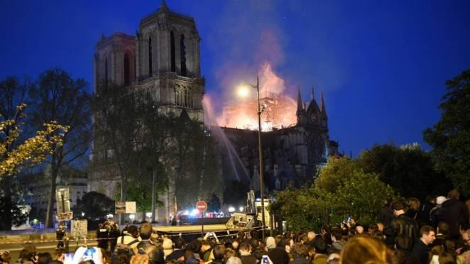 Notre Dame'ın Arıları Mucize Eseri Kurtuldu