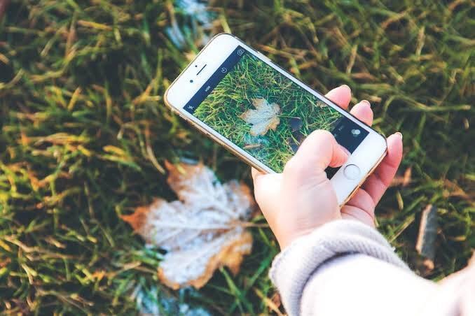 Doğayı Tek Fotoğrafla Tanıma İmkanı Sağlayan Uygulama: Seek