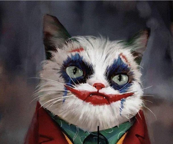 makyajlı çirkin kedi illustrasyon
