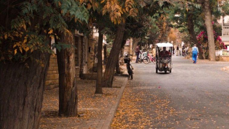sonbaharda büyükada sokakları