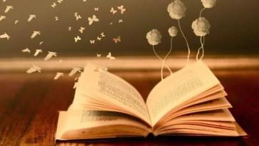 Kitap Oku-yamamak