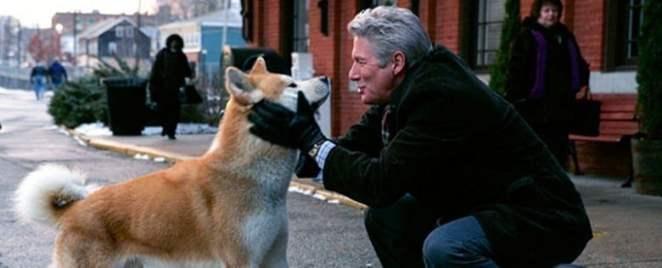 hachiko Gelmiş Geçmiş En Popüler Köpek Filmleri