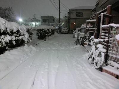 自宅に通じる道