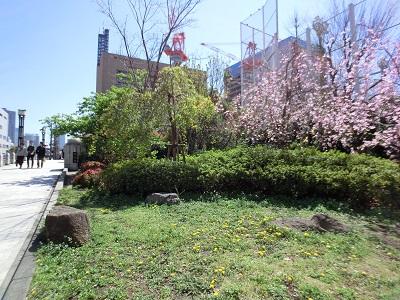 築地川千代橋公園(中央区)