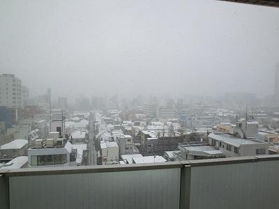 雪でかすむ新宿高層ビル群(病棟談話室から)
