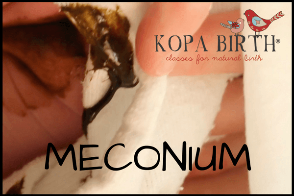 WEEK 21 PREGNANCY MECONIUM
