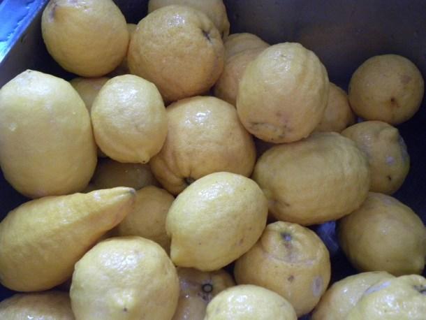 κι άλλα λεμόνια εικόνα