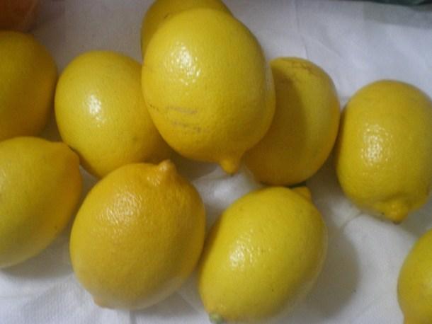 λεμόνια εικόνα