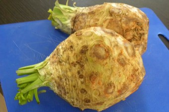 celery root picture