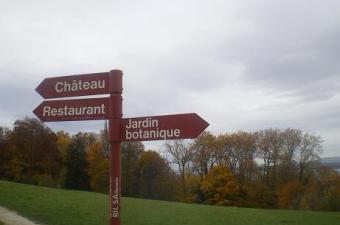 towards Chateau des Penthes
