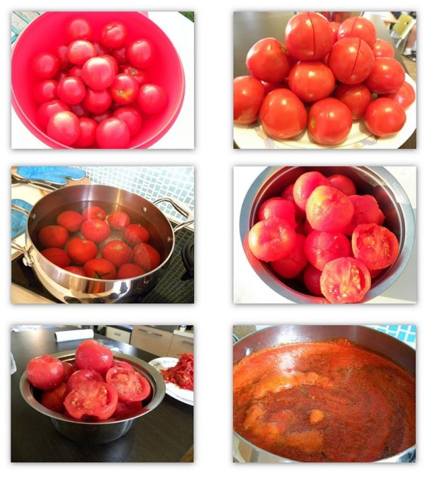 Collage making Marinara image