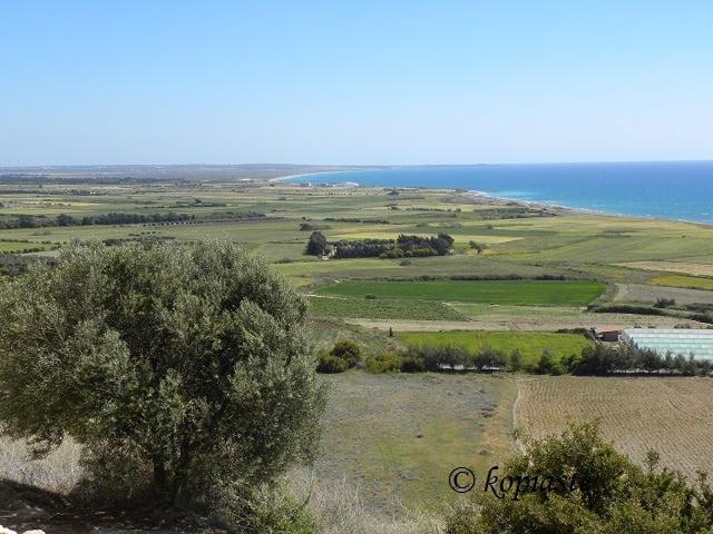 Coast of Akrotiri from Kourion