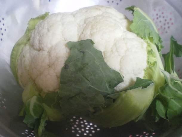 Cauliflower image