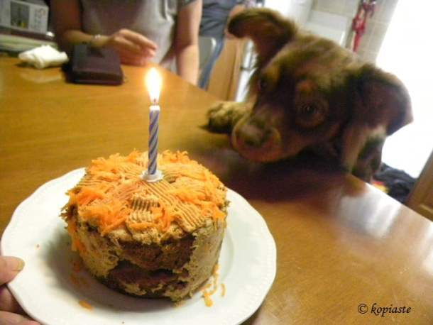 Carrot cake with lit candle