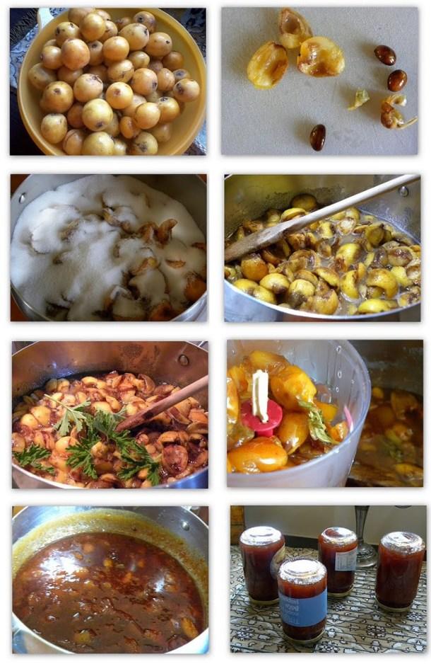 collage Loquat jam image