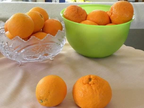 Mandarins and oranges image