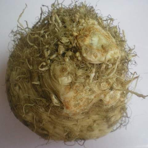 How to Clean Celeriac