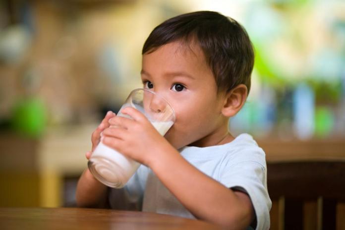 Susu Penggemuk Anak Terbaik