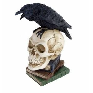 Corbeau sur Crâne