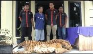 Permalink to Pria Beristri Enam Ditangkap Hendak Jual Kulit Harimau Sumatera