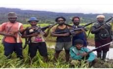 Permalink to 4 Pekerja Dilaporkan Selamat dari Serangan OPM di Nduga
