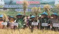 Permalink to Bupati Lahat Ikuti Pesta Panen Raya di Kecamatan Kukum