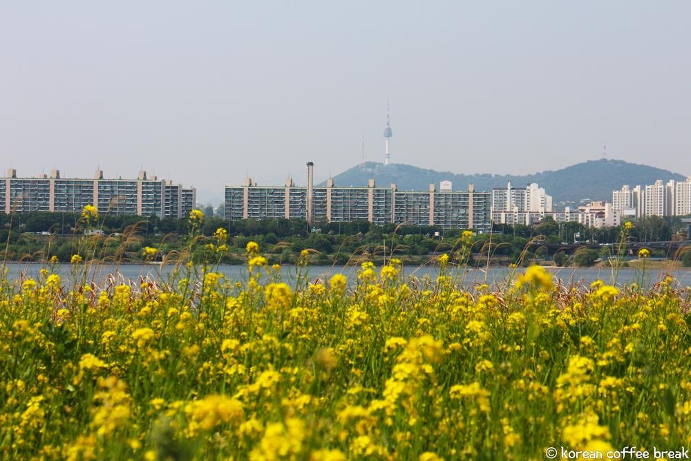 Hangang Seoraeseom