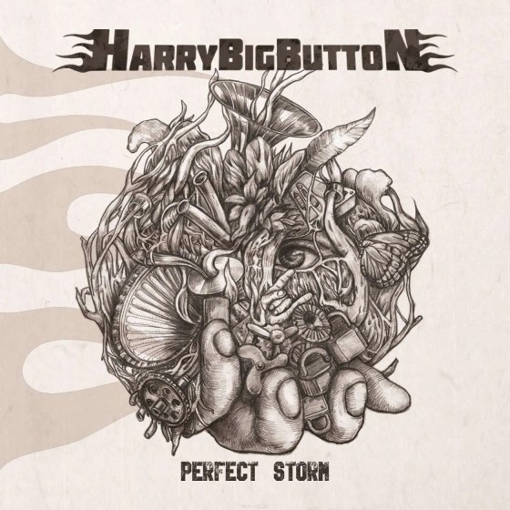 harrybigbutton perfect storm