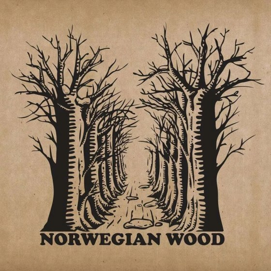 norwegian wood realize the real lies