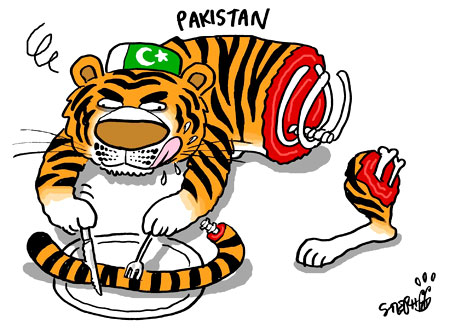 Cartoon from Korea Times - Mad Pakistani Tiger eating itself!