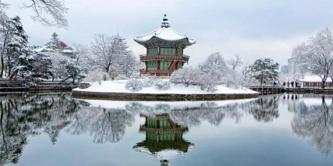 أحسن النشاطات الشتوية في كوريا