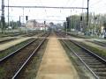 Pražské zhlaví 25.3.2007...
