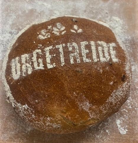 Urgetreide Sommerdinkel im Brot