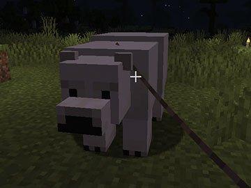 Domesticando a un Oso Polar en Minecraft