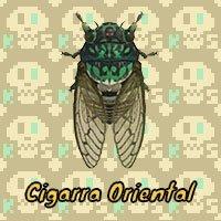 Cigarra Oriental en Animal Crossing New Horizons