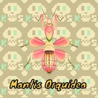 Mantis Orquídea en Animal Crossing New Horizons
