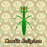 Mantis Religiosa en Animal Crossing New Horizons