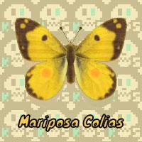 Mariposa Colias en Animal Crossing New Horizons