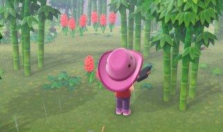 Isla del Bambú en Animal Crossing New Horizons