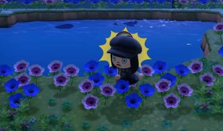 Isla de las Flores Híbridas en Animal Crossing New Horizons