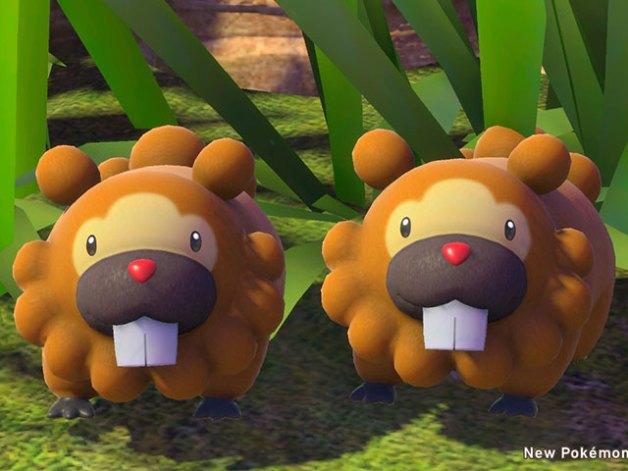 Bidoof en New Pokémon Snap
