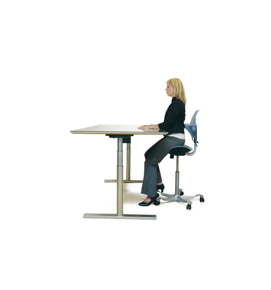 hag posture chair adjustable gym capisco puls saddle dublin ireland work