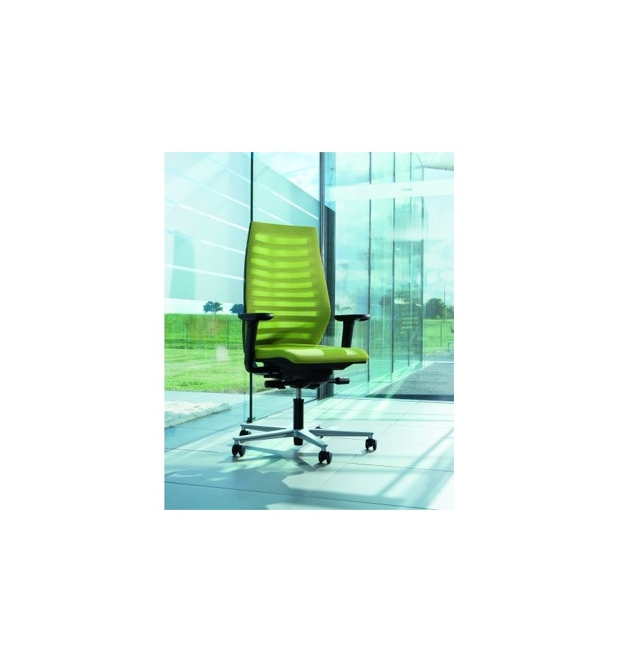 Ergo Funk K606S Ergonomic Chair  Designer ergonomic