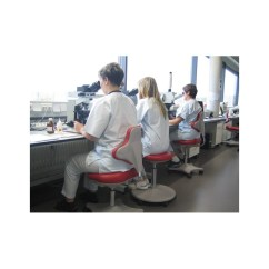 Red Childrens Desk Chair Hanging Stand Weight Laboratory Chair, Chairs For Labs, Ergonomic Laboratories Ireland