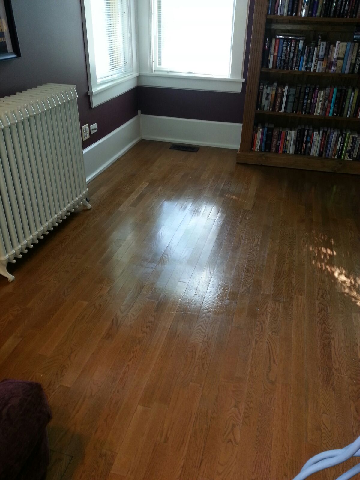 Hardwood Floor Cleaning  Rug Cleaning Hinsdale IL
